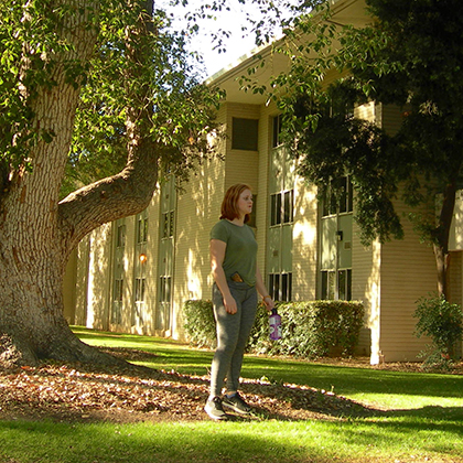 Camphor Tree | University of Redlands
